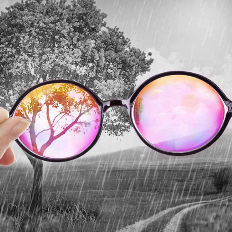 Rose Colored Glasses Dreamy Photo Effect Look Through Rose Colored Glasses